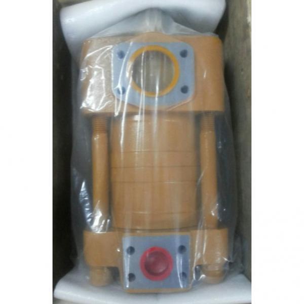 CQT63-80FV-S1376-A مضخة التروس الهيدروليكية