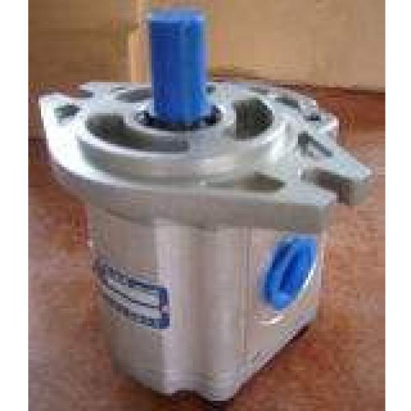 IPH-4B-32-20 مضخة التروس الهيدروليكية