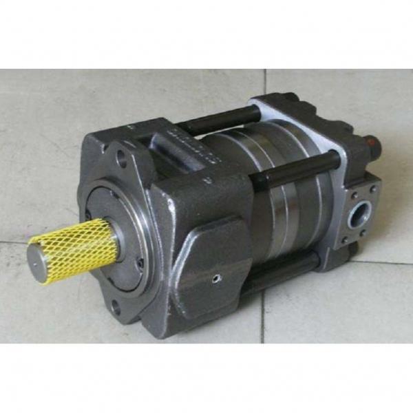 QT63-80-A مضخة التروس الهيدروليكية
