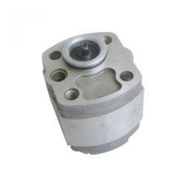 IPH-5B-50-11 مضخة التروس الهيدروليكية