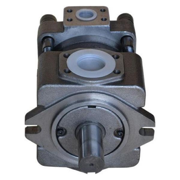 QT2323-6.3-6.3MN-S1162-A مضخة التروس الهيدروليكية